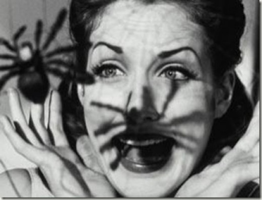 Fear of spiders (or arachnophobia) is an example of a Specific phobia. Fear of insects is one of the most common phobias.