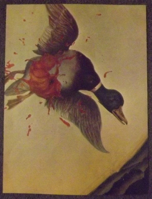 1971 Vintage Print--Philippe Weisbecker's Painting of a Mortally Wounded Duck in Flight