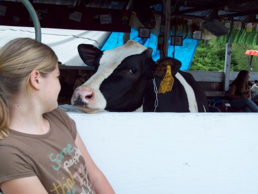 Grand-daughter Katelyn at the county fair....