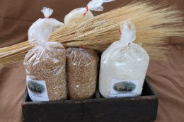 Amish Organic Grains and Flour