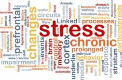 Binaural Therapy - a Solution for Adrenal Fatigue?