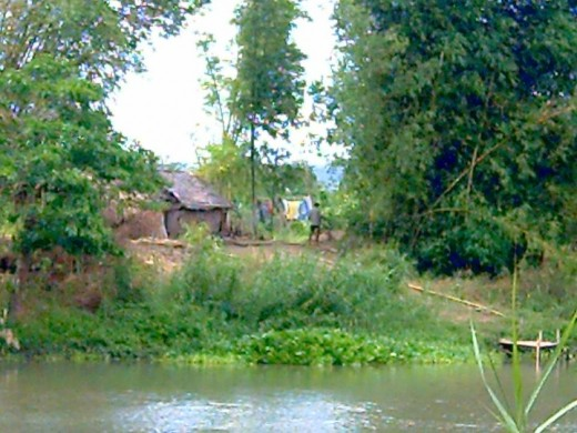 A nipa hut along the river bank