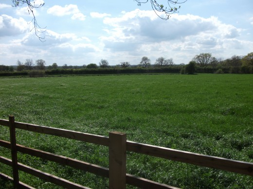 One of the fields upon which the battle of Bosworth was fought