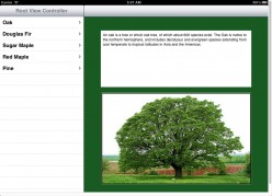 iOS | How To Create a SplitViewController iPad Application using a Storyboard