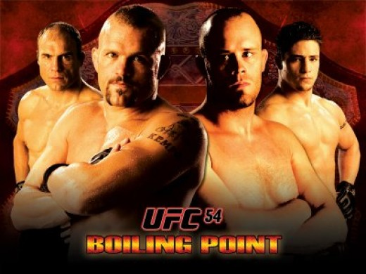 Ultimate Fighting Championship Travel Packages