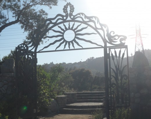 Walking meditations are best when you find a beautiful location such as this one at Griffith Park (Los Feliz, CA).