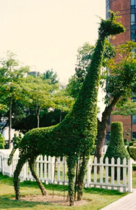 Giraffe, on a frame, Taiwan