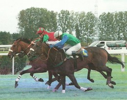 Thoroughbred racers are always followed around the track by a horse ambulance (right background).