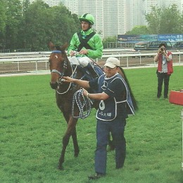 Thoroughbred racing in Hong Kong is very popular. Super Satin returns after winning the Hong Kong Derby.