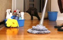 Cleaning is an easy and cheap way to increase the value of your home.
