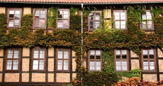 A vine covered building at dusk, Quedlinburg, Germany.