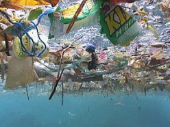 What Should I Know about Earth's Floating Islands of Garbage?
