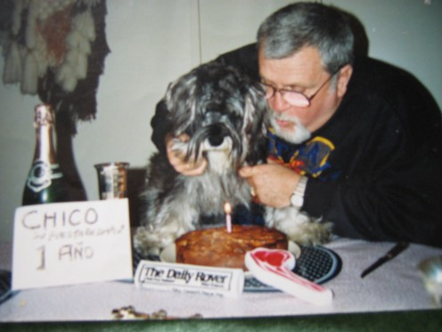 "I love dogs, too!  party for my beloved Mini Schnauzer, ""Chico.""  talk about a pampered pet! The ""fat"" is a shadow111"