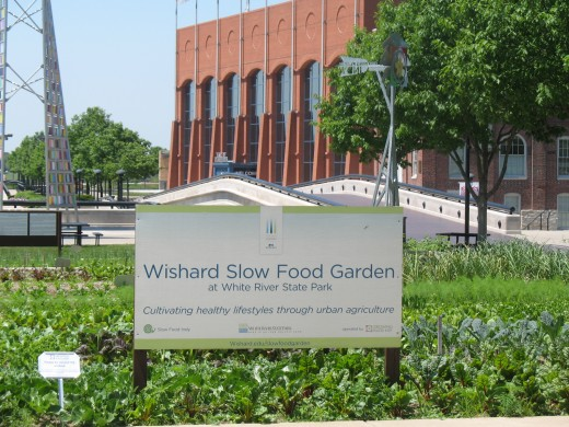 Slow Food Garden with NCAA Hall of Champions Museum in the background