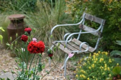 """Summer Garden"" by Simon Howden @ FreeDigitalPhotos,net"