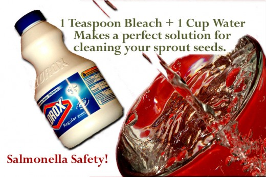 A 2% bleach solution is required to disinfect your seeds from food-borne bacteria.