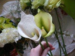 Calla lily bouquet, calla lilies for my bouquet—marajane creations (Flickr.com)