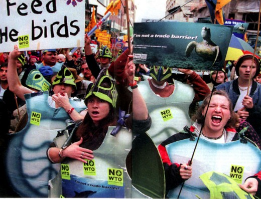WTO Sea Turtle activists 1999