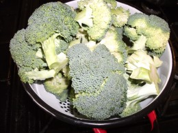 Freshly cut Broccoli