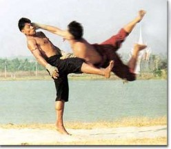 A Look Inside The Top Ten Deadliest Martial Arts From Around The World