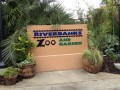 Riverbanks Zoo in Columbia, SC: Inside Tips and Video