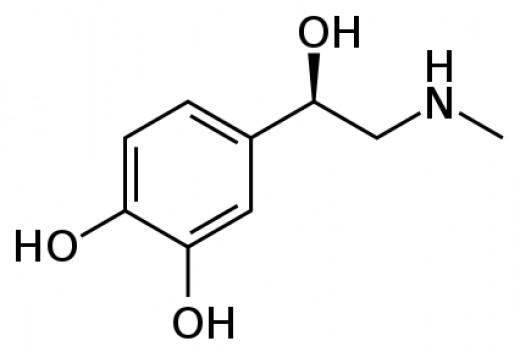 Epinephrine Structure