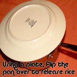 Replace the saucepan lid with an inverted plate. Flip the pan so the rice releases onto the plate in one mold. It's okay if some of the rice sticks, it will taste just as great!
