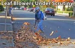 Gas-Powered Leaf Blowers Illegal in Many Cities