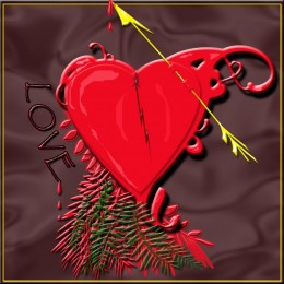 Valentines Wounded Heart