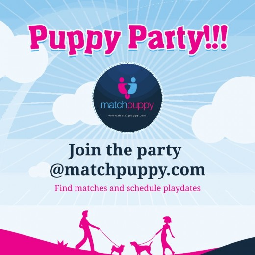 Join the party at MatchPuppy.com.