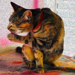 Turn Your Photos Into Digital Oil Paintings!  A Gallery of Encouragement to all Photographers