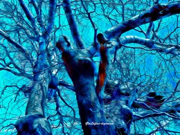 """Using the channel color mixer, I changed the sky to deep turquoise, then outlined the limbs in """"poster edges"""" before using the oil painting feature."""