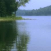 Harmonious-waters profile image