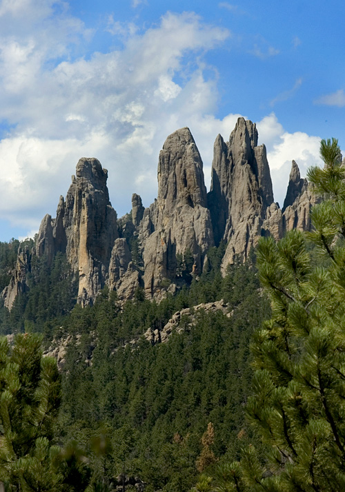 Cathedral Spires along Needles Highway