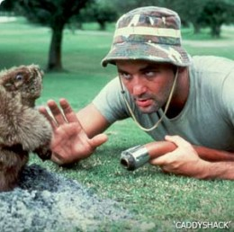 Bill Murray meets the groundhog.