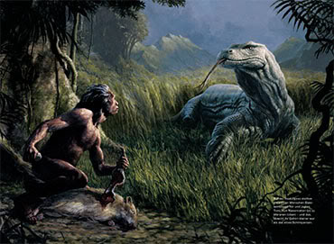 On the Island of Flores, Komodo Dragons once preyed upon dwarf humans- Homo Floresiensis- sometimes referred to as 'Hobbits'.