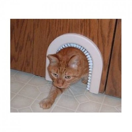 Cat love the brush that comes with the Cat hole Pet Door!