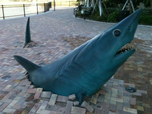 Mako shark statue