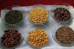 Lentils and whole grains
