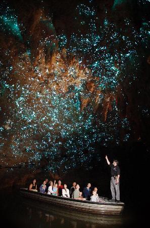 Waitomo Glowworm Caves- a relaxing tour