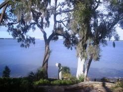Florida Native Americans: The Tocobaga Tribe of Tampa Bay