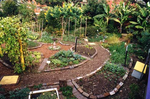 Combination of Food Forest and Food Forest Garden.  This one is very peaceful and tranquil while being easy to walk and access.