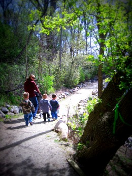 """Walking along the """"North Woodland Path."""""""