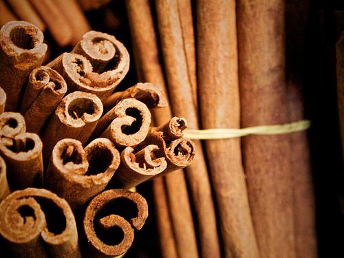 Cinnamon by mhiguera.