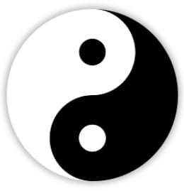 The Yin & Yang or Light & Dark
