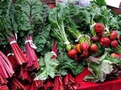 How to Grow and Prepare Beets