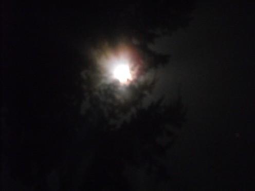 Moon Burst