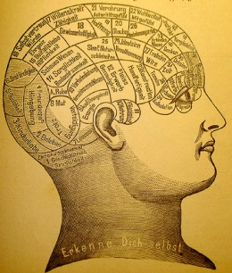 19th century phrenological chart