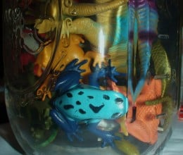 The mason lovey jar used to hold only plastic frogs.