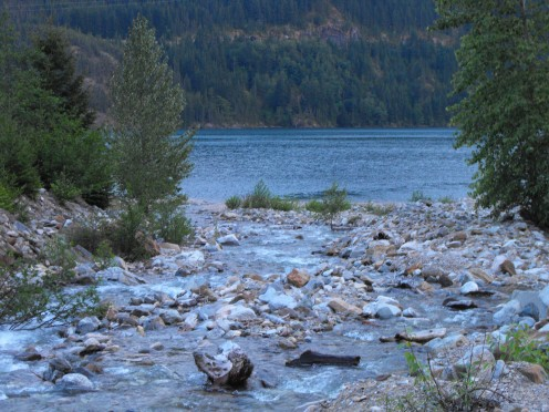 Creek Rushing into Diablo Lake near North Cascade Institute